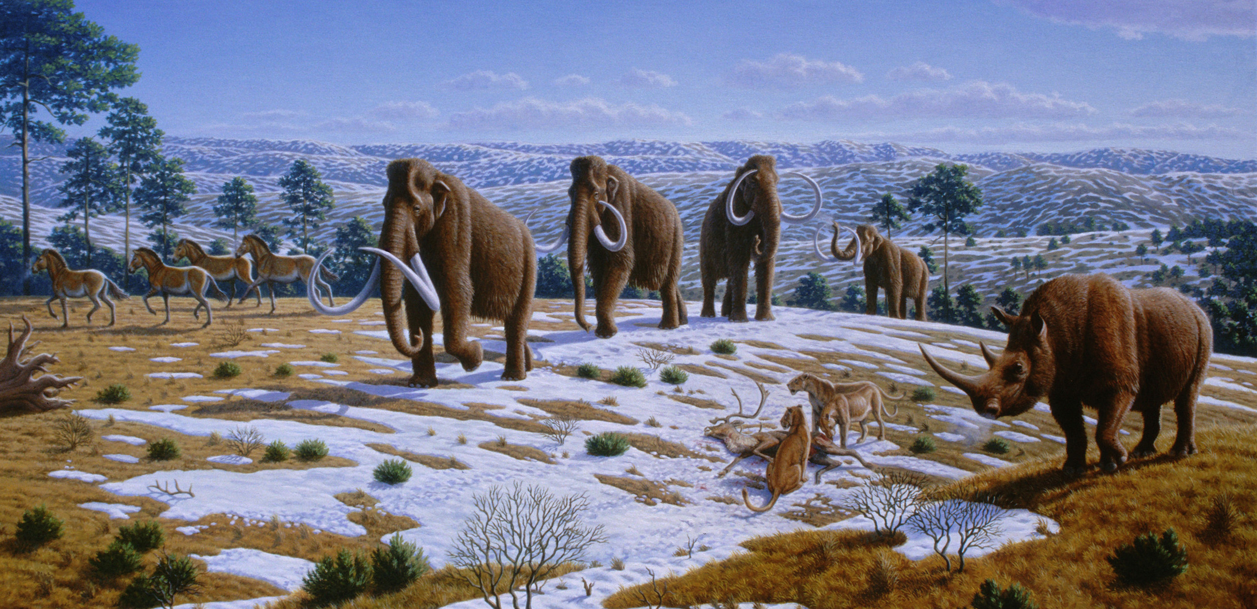 woolly_mammoth_siberian_tundra-1