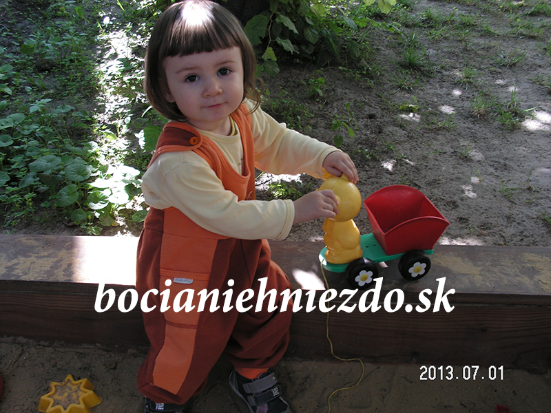 PICT8120