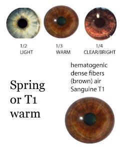 eyes spring