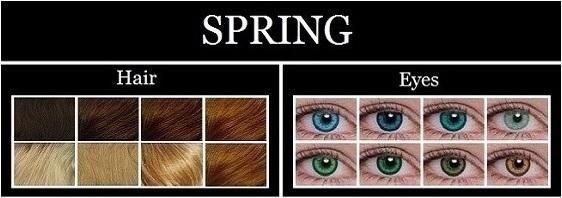 spring-type-characteristics1