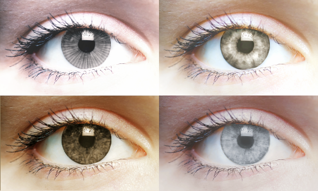 the four iris patterns
