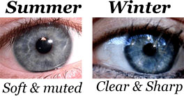 newsletter-summer-winter-eye
