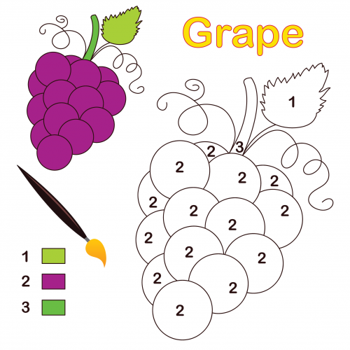 grape-color-number-coloring-page